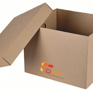 Export Corrugated Cardboard Fruit Carton