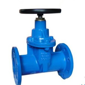 Flanged DI Gate Valves, 150 LB, 10 Inch