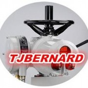 Tianjin Bernard Actuator Co.,L